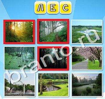 Игра Фото к слову - ответы