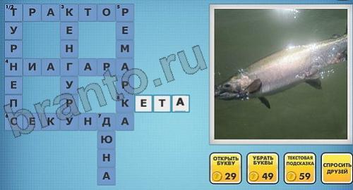 Фото кроссворды - ответы на игру в Одноклассниках
