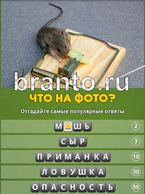 Популярный ответ: что на фото? - ответы на игру