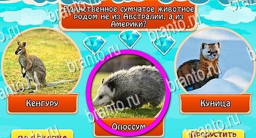 Всезнайка - ответы на игру